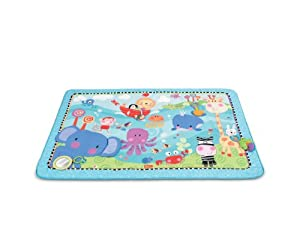 Fisher-Price Discover 'n Grow Play Mat, Jumbo (Discontinued by Manufacturer)