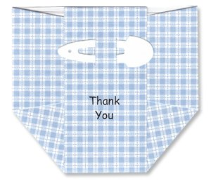 Baby Thank-you Cards - Blue Plaid Diapers