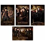 Lot of 4 Twilight New Moon Posters - Group, Good, Bad