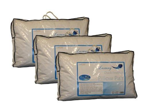 Homescapes KISSEN im 6er PACK gefüllt mit weißen ENTENFEDERN ( 48 x 74 cm ), Bezug aus 100% PURER BAUMWOLLE, waschbar, SCHUTZ gegen STAUBMILBEN, weicher-mittlerer Härtergrad