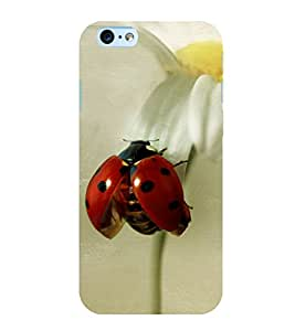 Red Beatle 3D Hard Polycarbonate Designer Back Case Cover for Apple iPhone 6