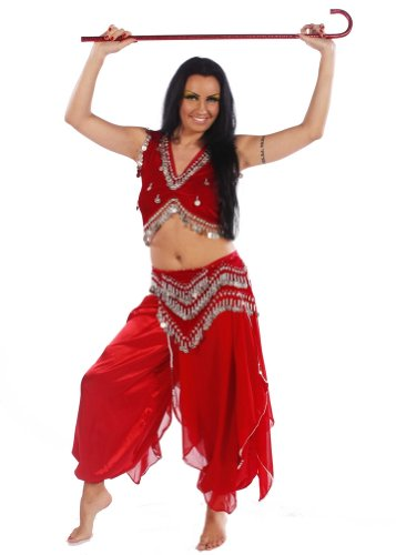 Belly Dance Skirt, Pants, Top & Hip Scarf Costume Set | Chebba Shine