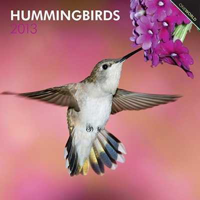 (12x12) Hummingbirds - 2013 Wall Calendar