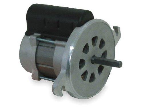 Electric Motor Oil