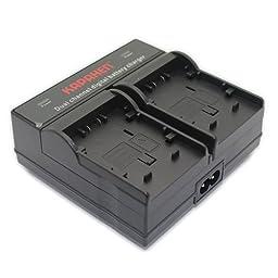 Kapaxen Dual Channel Battery Charger for Panasonic VW-VBG070 VW-VBG130 VW-VBG260 VW-VBG390 Camcorder Batteries