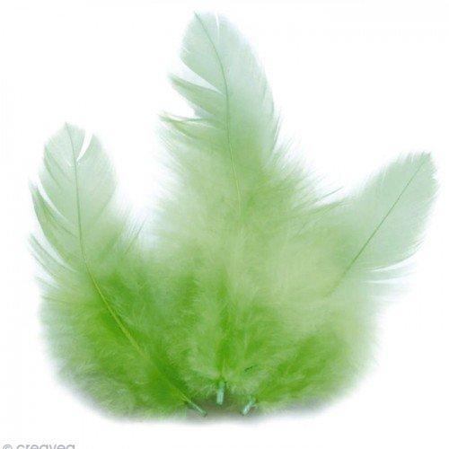 Piume di gallo 10 cm - verde chiaro