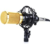 Floureon BM-800 Condenser Studio Recording Microphone & Shock Mount Holder (Black)