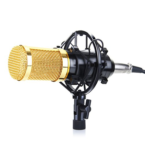 Floureon-BM-800-Condenser-Sound-Studio-Recording-Microphone-Mic-Shock-Mount