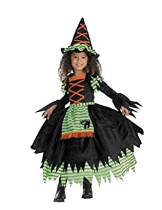 Story Book Witch Costume - Toddler Medium