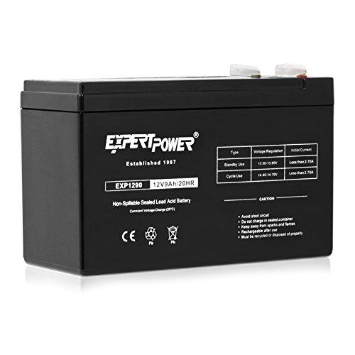 ExpertPower 12V 7 Amp EXP1270 Recha…