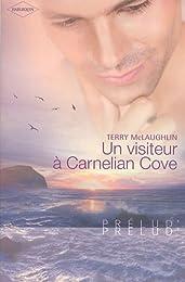 Un visiteur à Carnelian Cove