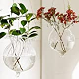 1PC Lotus Leaf Hydroponic Plants Flower Glass Vase Home Party Decoration