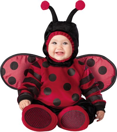 Itty Bitty Lady Bug Costume - Infant Large front-784982