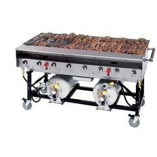 Stainless Steel Portable Propane Gas Grill
