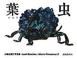 葉虫―小檜山賢二写真集 Leaf Beetles:Micro Presence〈2〉