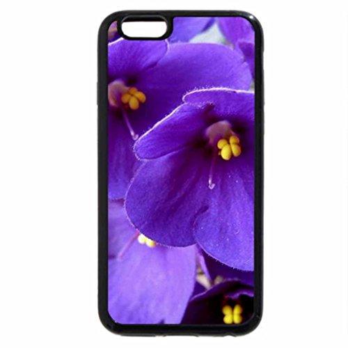 iphone-3s-iphone-6-cas-noir-violet-violette-africaine