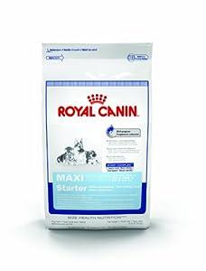 dry pet food royal canin maxi starter mother and babydog dry dog food formula 26. Black Bedroom Furniture Sets. Home Design Ideas