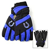 Indianapolis Colts Nylon Shell Thinsulate Lined Ski Gloves