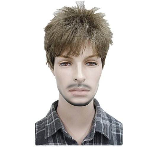 Men's Short Straight Hair Wig