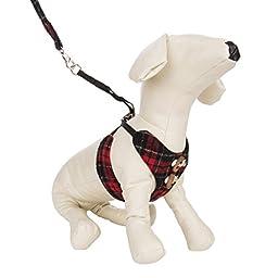 CueCue Pet Small Choke-Free Scottish Kilt Design Harness and Leash Combo Set, Brown & Yellow Plaid