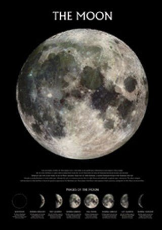 Educational-Phases-of-the-Moon-Poster-61x915cm