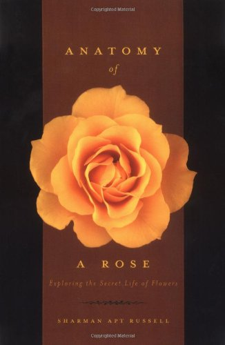 Anatomy Of A Rose: Exploring The Secret Life Of Flowers