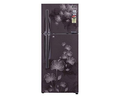 LG GL-D292JPFL/MFL/SFL/GFL 258 Litres Double Door Refrigerator (Florid)