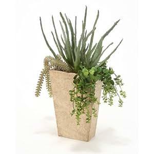 Amazon Artificial Aloe and Cactus Desk Top Plant in