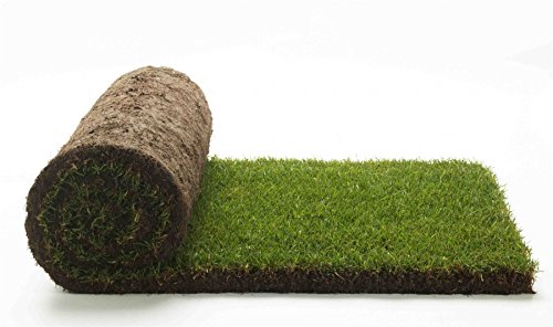 premium-turf-grass-natural-real-grass-evergreen-400-x-2500mm-roll-pack-of-5