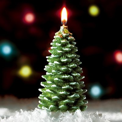 Wonderland Frosted Christmas Tree Candle