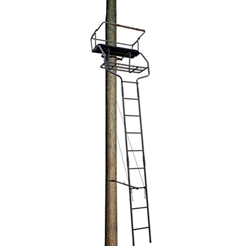 Read About Big Dog 18 foot Pointer 2-person Ladder Tree Stand BDL-415