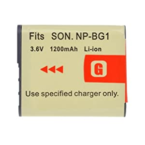 GTMax High Capacity InfoLithium NP-FG1 Replacement Lithium-Ion Battery for Sony Cyber-shot Series