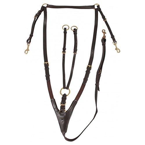 Horka elastica pettorale rimovibile Martingala Cavallo Formazione di qualità redini, Black / Gold, Full
