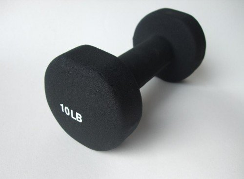 Sunny Health and Fitness Neoprene Dumbbell (10-Pound)