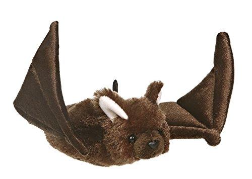 Aurora Bat