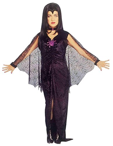 Weberella Spider Witch Gothic Mistress Vampire Deluxe Adult Costume
