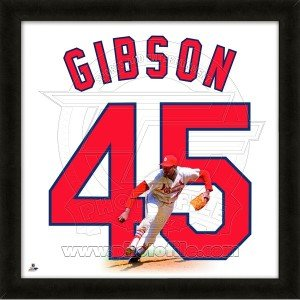 Bob Gibson St. Louis Cardinals 20x20 Framed Uniframe Jersey Photo by Biggsports