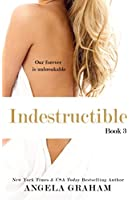 Indestructible (Harmony Book 3) (English Edition)