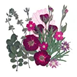 Silver J Pressed flower, 2 packs. Mixed flowers. Art & craft, card making materials.