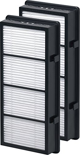 Holmes True HEPA Filter HAPF600D-U2, Filter B, 2 Pack (Holmes True Hepa B Filter compare prices)