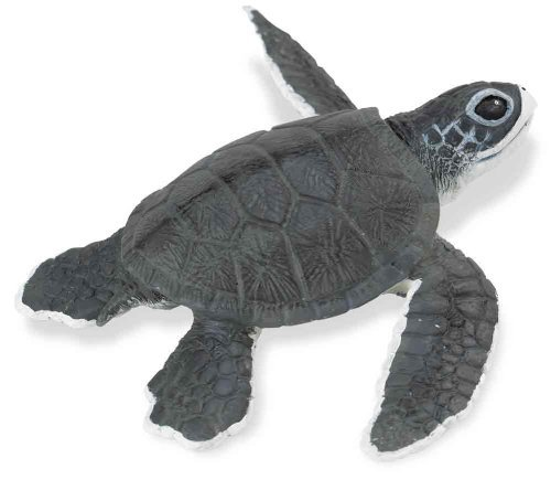Safari Ltd Incredible Creatures Sea Turtle Baby