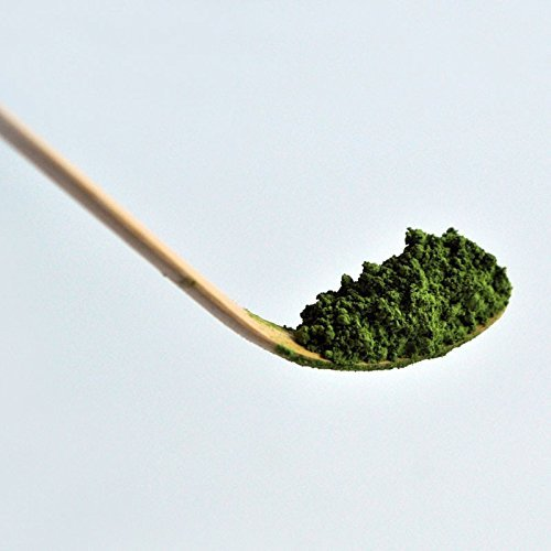 Matcha Scoop by Canton Tea Co. (Canton Tea Co compare prices)