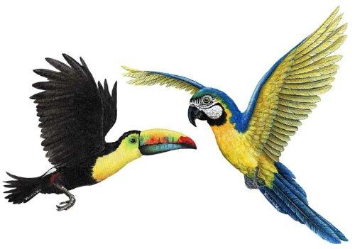 Tropical Birds Sticker Murals Combo Pack