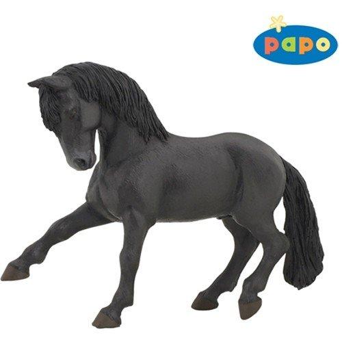 Black Lusitanian Horse