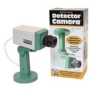 Faux Security Cameras
