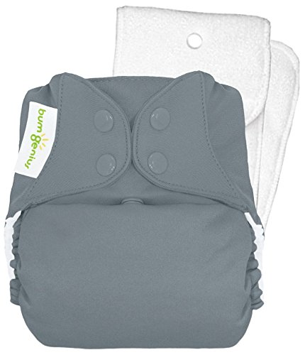 BumGenius 4.0 One-Size Cloth Diaper - Armadillo - Snap