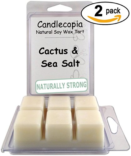 Candlecopia Cactus & Sea Salt 6.4 Oz Scented Wax Melts - Green, Watery Cactus Accords Mingle With Fresh, Ozonic Sea Salt In This Unique, Clean Combination - 2-Pack Of Naturally Strong Scented Soy Wax Cubes Throw 50+ Hours Of Fragrance When Melted In Scent