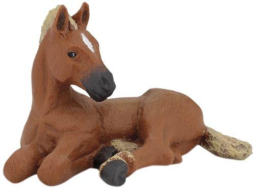 American Quarter Horse Foal - 1