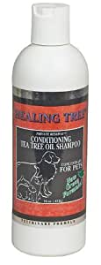 Tea Tree Private Reserve Shampoo 16 oz
