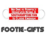 Southampton F.C - No One is Perfect Mug